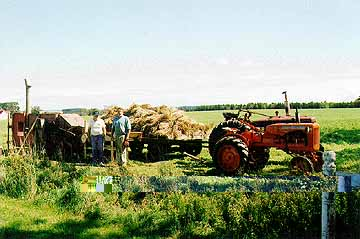 allis b and farmall h running thresher and trailer