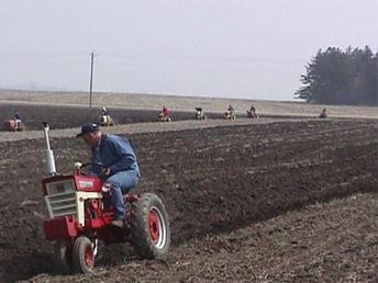Antique Tractors - Farmall 560 Picture