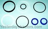 photo of New series with plastic type piston rings and white backup washer. For tractor models 265, 275, 285, 290, 298, 30D, 50, 50B, (565, 575, 590, 670, 675, 690 all 2 wheel drive). VERIFY PART NUMBER TO ENSURE CORRECT REPLACEMENT.