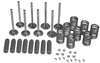 photo of Cylinder HEAD Overhaul Kit. Contains intake & exhaust valves, springs, guides, and keys. 1 kit used in 201 CID 4 cylinder gas engine (block # R26150) & 227 CID 4 cylinder gas engine (to SN# 122999). For tractor models 3010, 3020.