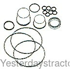 1810503M92 Orbital Steering Unit Seal Kit 1810503M92